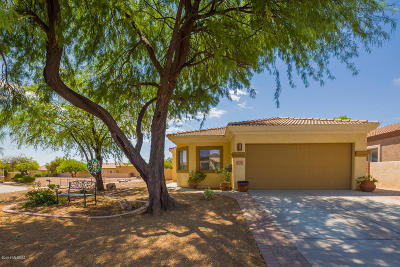 Single Family Home Active Contingent: 206 E Corte Rancho Dorada