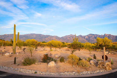 Oro Valley Residential Lots & Land For Sale: 14 W Shimmering Sand Place #Lot 494