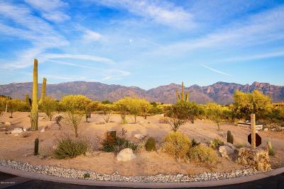 Oro Valley Residential Lots & Land For Sale: 94 W Shimmering Sand Place #Lot 495