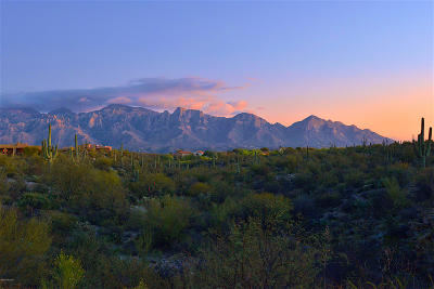Oro Valley Residential Lots & Land For Sale: 95 W Shimmering Sand Place #Lot 491