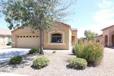 Marana Single Family Home For Sale: 11273 W Farm Village Drive
