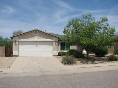 Tucson Single Family Home For Sale: 3482 S Desert Echo Road