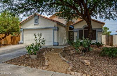 Tucson Single Family Home For Sale: 8925 E Laurie Ann Drive