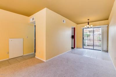 Tucson Condo For Sale: 3800 E 2nd Street #209