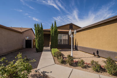 Tucson Single Family Home For Sale: 2615 E Warwick Castle Lane