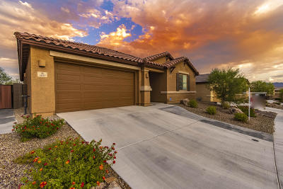 Tucson Single Family Home For Sale: 4825 W Willow Wind Way