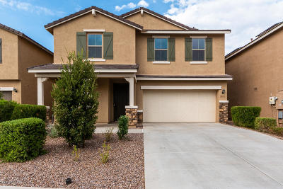 Tucson Single Family Home For Sale: 6676 E Via Boca Chica