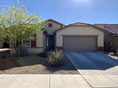 Tucson Single Family Home For Sale: 883 N Robb Hill Place
