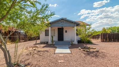 Tucson Single Family Home For Sale: 1041 N Perry Avenue