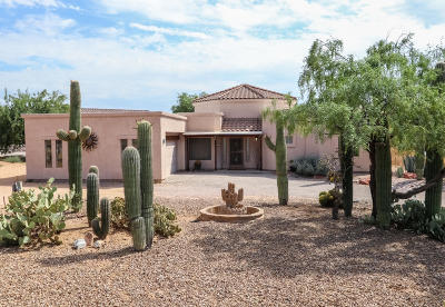 Tucson Single Family Home For Sale: 2080 W Hunter Road