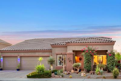 Marana Single Family Home For Sale: 11120 W Snaketown Street