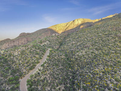 Tucson Residential Lots & Land For Sale: 6751 N Rattlesnake Canyon Road