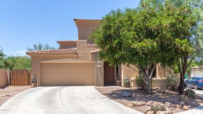 Sahuarita Single Family Home For Sale: 104 E Placita Lago Bello