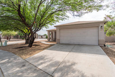 Pima County Single Family Home Active Contingent: 5341 S Royal Richmond Drive