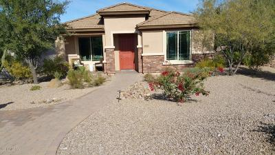 Vail Single Family Home For Sale: 10245 S Rose Wagon Way