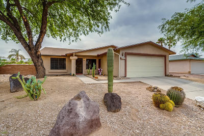 Tucson Single Family Home For Sale: 8700 N Moison Drive
