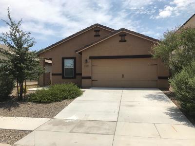 Tucson, Oro Valley, Marana, Sahuarita, Vail Single Family Home Active Contingent: 6725 S Drift Boat Drive