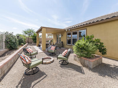 Sahuarita Single Family Home For Sale: 755 W Calle La Bolita