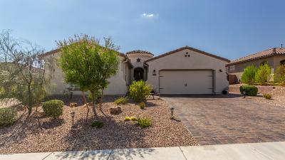 Marana Single Family Home For Sale: 14227 N Golden Barrel Pass