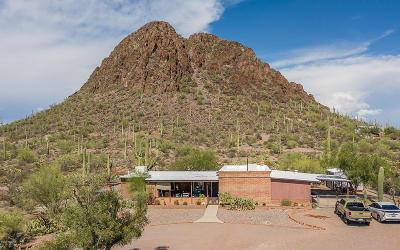 Tucson Single Family Home For Sale: 5645 S Joseph Avenue