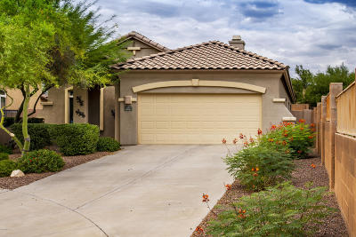 Oro Valley Single Family Home Active Contingent: 908 W Cork Oak Place