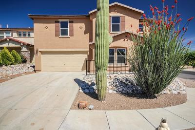 Tucson Single Family Home For Sale: 9438 N Sammy Avenue