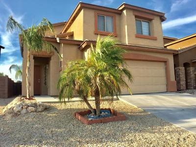 Pima County Single Family Home For Sale: 3686 W Goshen Drive