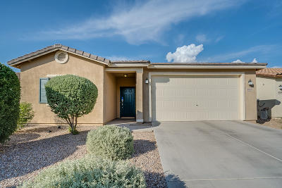 Tucson Single Family Home For Sale: 8938 N Country Cove Trail