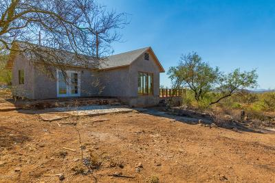 Tucson Single Family Home For Sale: 23600 W Bush Road