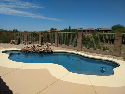 Pima County Single Family Home For Sale: 13803 E Sage Hills Drive