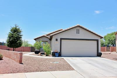 Marana Single Family Home Active Contingent: 12855 N Signature Place