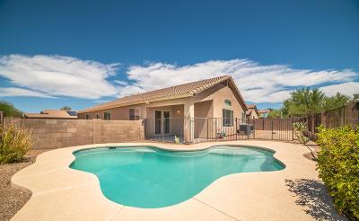 Pima County Single Family Home For Sale: 3545 S Desert Motif Road