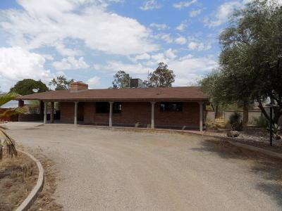 Tucson Single Family Home For Sale: 910 N Wilmot Road