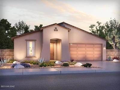 Tucson Single Family Home For Sale: 2795 W Shannon Ridge Road