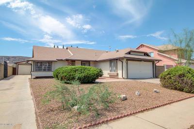 Tucson Single Family Home For Sale: 3101 W Calle De La Bajada