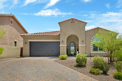 Single Family Home Active Contingent: 13296 N Downy Dalea Court