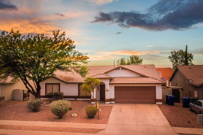 Tucson Single Family Home For Sale: 9615 E Dunnigan Drive