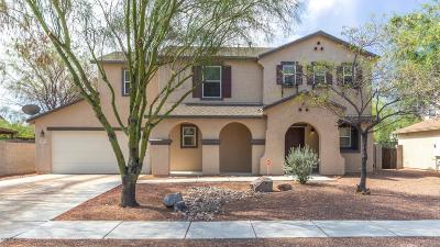 Tucson Single Family Home For Sale: 4913 W Calle Don Antonio