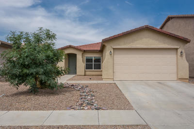 Tucson Single Family Home For Sale: 9237 N Centipede Avenue
