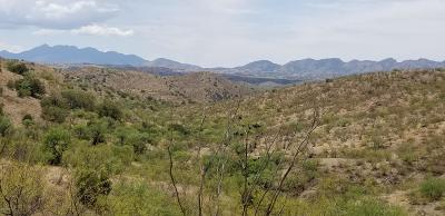 Residential Lots & Land For Sale: S Red Cloud Mine Road