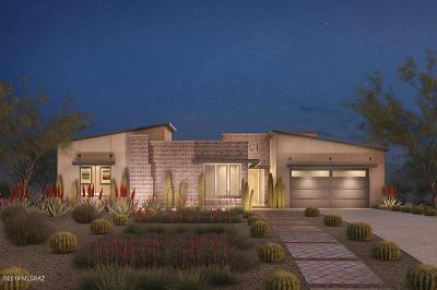 Pima County Single Family Home For Sale: 14145 N Los Saguaros Drive