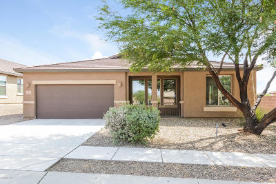 Single Family Home For Sale: 590 S Desert Haven Road