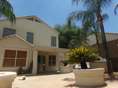 Tucson Single Family Home For Sale: 1341 E Ishtaria Place