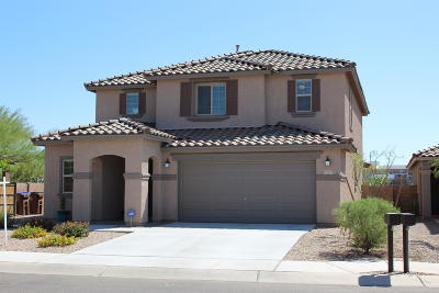 Marana Single Family Home For Sale: 12553 N School Day Drive