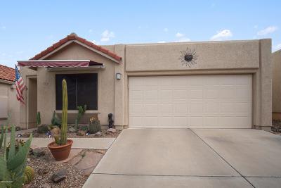 Tucson Single Family Home For Sale: 231 E Highcourte Lane
