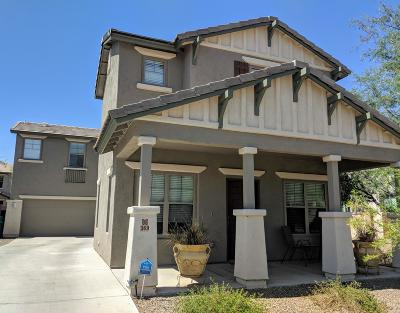 Sahuarita Single Family Home For Sale: 369 W Calle Cajeta