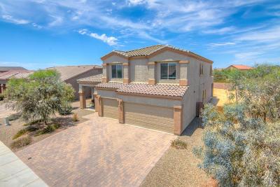 Single Family Home For Sale: 11070 W Snaketown Street