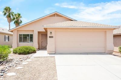 Tucson Single Family Home For Sale: 10066 E Paseo San Ardo