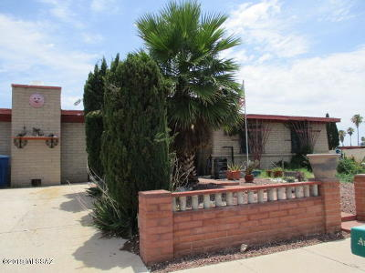 Tucson Single Family Home For Sale: 5121 S Greenway Drive