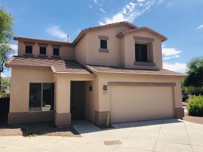 Tucson Single Family Home For Sale: 3346 N Camino La Jicarrilla